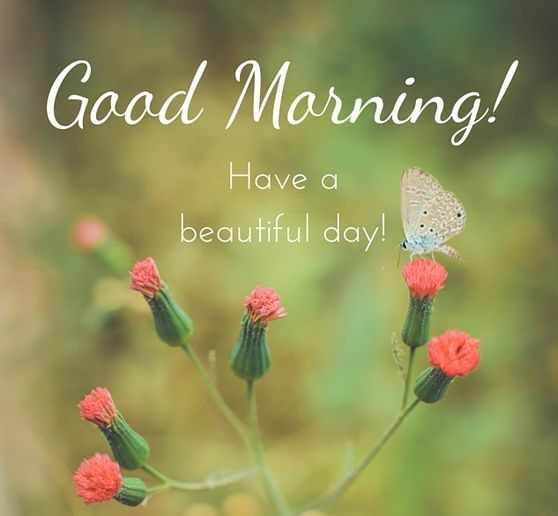 Good Morning Wishes For Beautiful Day