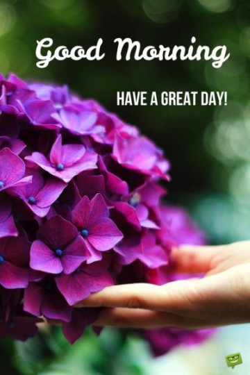 Good Morning Wishes Have Great day