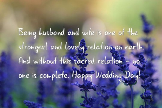 Happy 1st Wedding Anniversary Greetings With Beautiful Flowers