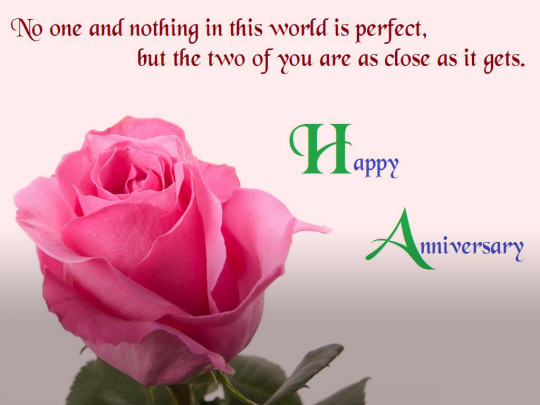 Happy Anniversary Wishes With Rose And Love