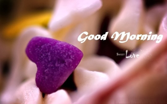 Romantic Good Morning Wishes For Love