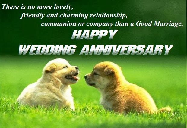 Wedding Anniversary Wishes With Togetherness Of Love