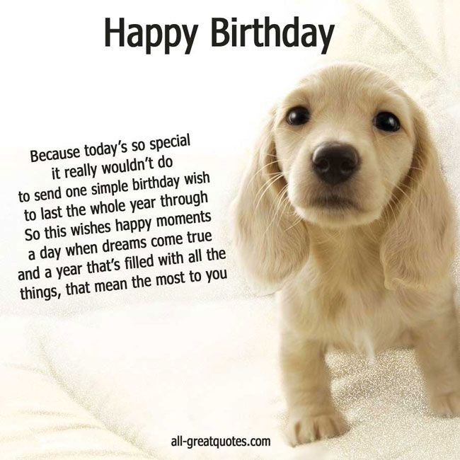 Happy Birthday Wishes With Sweet Dog