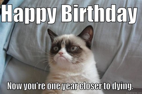 Astounding Birthday Meme Image With Cute Cat