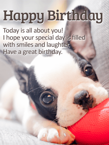 Birthday E-Card With Best Wishes And Cute Dog