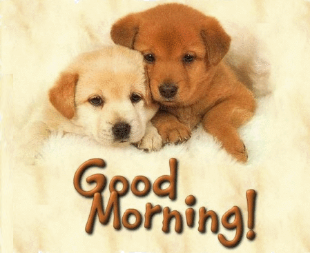 Good morning greetings with cute puppies nicewishes good morning greetings with love m4hsunfo