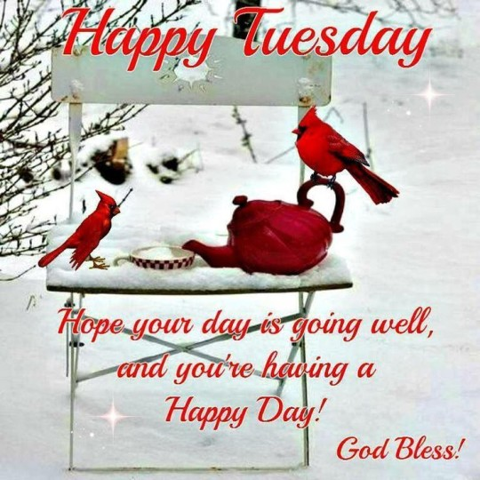 Good Morning Tuesday Wishes (2)