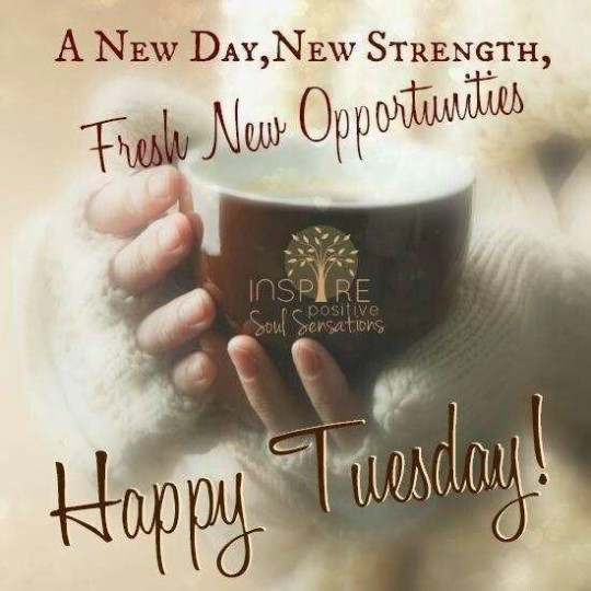 Good Morning Tuesday Wishes