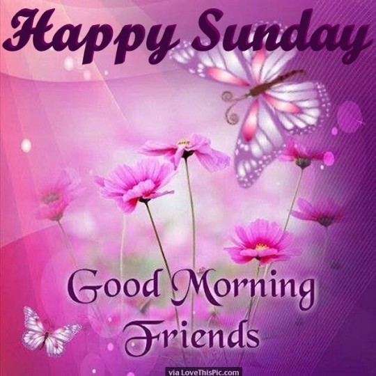 Good Morning Wishes For A Happy Sunday