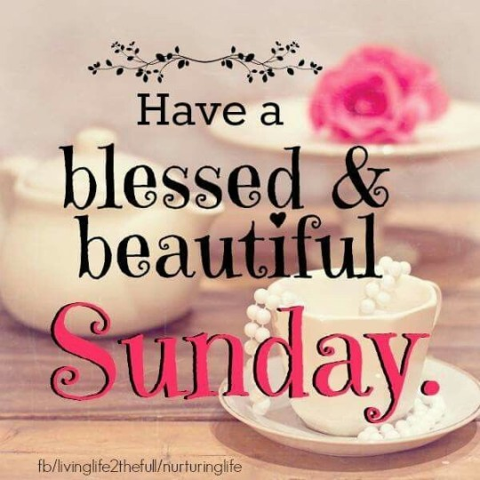 Good Morning Wishes For A Relaxing And Stress Free Sunday