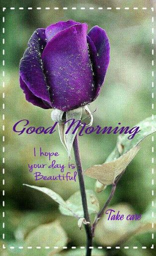 Good Morning Wishes With Beautiful Flowers Images : Good morning wishes for her with beautiful flower nicewishes
