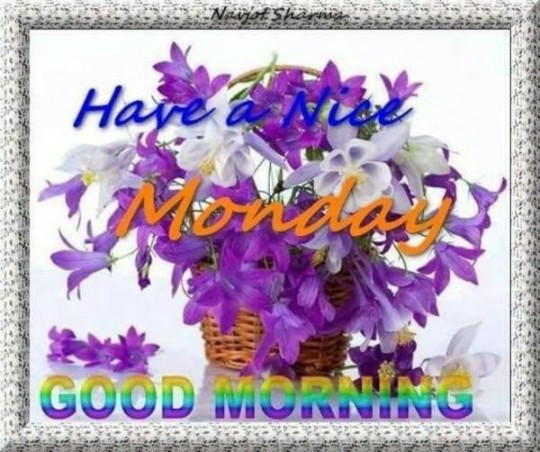Good Morning Wishes For Monday Morning