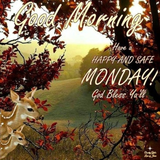 Good Morning Wishes For Monday With Blessings
