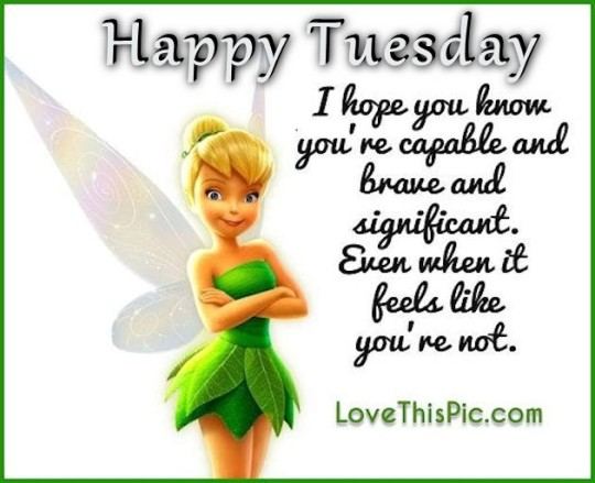 Good Morning Wishes For Tuesday Morning Wishes