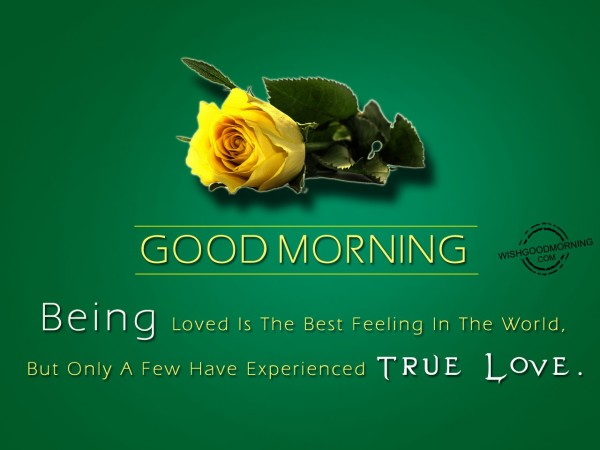couple good morning quotes