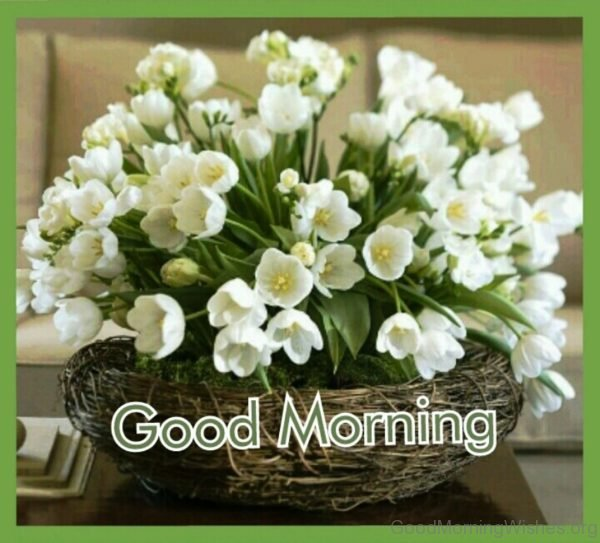 Flowers with good morning wishes bright sunrise good morning wishes good morning wishes with white flowers mightylinksfo