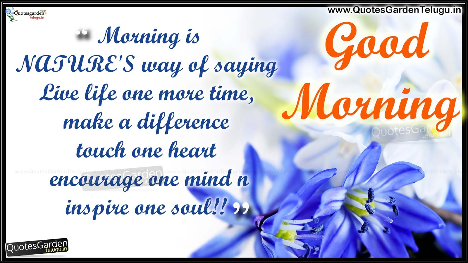 Breathtaking good morning wishes with quote nicewishes latest good morning greetings status messages m4hsunfo