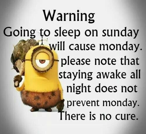 Monday Morning Humor Quotes: Everybody Hates Monday Funny Image Nice Wishes