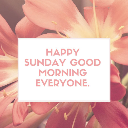 Sunday Morning Wishes For Everyone