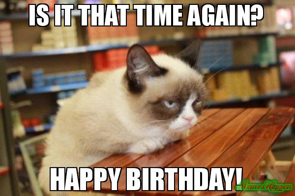 Funny Happy Birthday Cat Meme : Happy birthday amusing meme with funny cat nicewishes