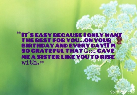 Terrific Birthday Wishes With Greetings For My Sister