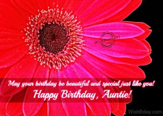 Unique Birthday Wishes For My Aunt