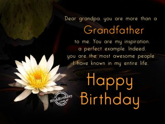 Best Grandpa Birthday Quotes With flowers 7s