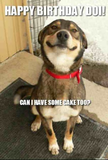 Funny B'day Image With Hilarious Dog Wishing For A Nice Day