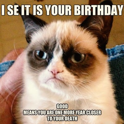 Funny Birthday Image With Saying Cats For A Joyful Life
