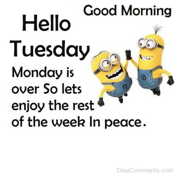 Tuesday Good Morning Wishes With Sayings Of Minionsd