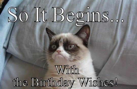 Wonderful Birthday Wishes Image With Funny Cat For Special One