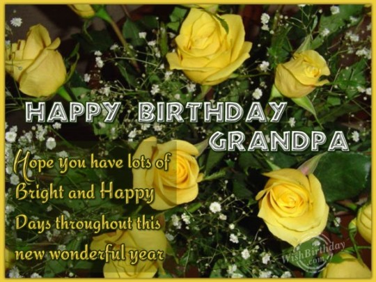Wonderful Birthday Wishes With Quotes For My Grandfather